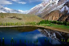 Phandar Lake - Wonder Lake (NotMicroButSoft (Fallen in Love with Ghizar, GB)) Tags: reflection nature pakistn hindokush ghizar phandar