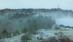 Cold Winter..x (Lisa@Lethen) Tags: trees winter mist snow nature weather fog happy scotland frost pole tuesday telegraph