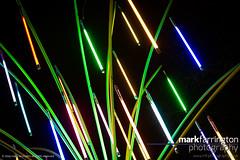 Garden of Light by TILT (Mark R Farrington) Tags: uk england london digital canon garden photography eos europe neon unitedkingdom britain capital trafalgarsquare picadilly jungle lumiere 7d leicestersquare mayfair stjames regentsstreet capitalcity gardenoflight desc2012