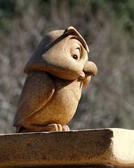 Disney Owl (thinduck42) Tags: california sculpture bird disneyland disney panasonic owl animation anaheim fz200
