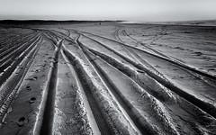 ligne de vie (alouest225) Tags: sea blackandwhite mer seascape france beach monochrome landscape sand noiretblanc sony traces sable paysage plage aquitaine gironde lasalie rx100m3