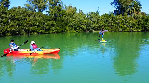 2_10_16 Kayak Paddleboard Tour Sarasota FL 25