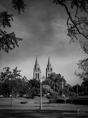 Adelaide, South Australia (Foraggio Photographic) Tags: blackandwhite monochrome architecture landscape mono cathedral gothic adelaide southaustralia frenchgothic stpeterscathedral