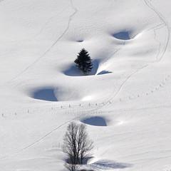 Dolines  la Poyette (Suchet) (poncetdespontets) Tags: neige doline jurasuisse juravaudois
