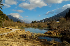Zelenci Nature Reserve (acgasser) Tags: lake colour nature beauty see natur slovenia zelenci