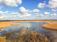 2016-366 049 The Lake at Farlington Marshes (graber.shirley) Tags: