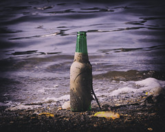 Message Received (joegeraci364) Tags: ocean sea color art beach water print hope coast photo bottle message image note shore float lore