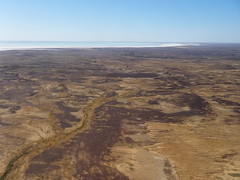 Lake Eyre Sth DSC08723 Sth Australia (Iancochrane) Tags: australia outback southaustralia lakeeyre katithanda