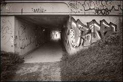 2015-09_D70_5545_20151121NB3 (Réal Filion) Tags: villedequébec québec canada graffiti dessin art révolte délinquance tunnel piste cyclable drawing revolt delinquency cycletrack quebeccity