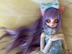 Pretty Kitty (Pullipprincess) Tags: cute kid doll dolls kawaii bjd resin luts delf balljointeddoll corni kiddelf kidzuzudelfcorni