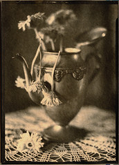 (Mark Magin) Tags: flowers coffee vintage vase caffenol darkroomprint arista200 art300 industar51 burkejames5x7 vidnasghost markmagin lifeisshortanddeathislong