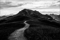 le chemin (Paucal) Tags: leica france jaune montagne alpes path grand trail mm monochrom t mont chemin randonne aravis bornand alpages lachat summilux35 chinaillon