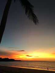Darwin sunset (kelliejane) Tags: sunset nt australia darwin palm palmtrees northernterritory skycity 2016 mindilbeach kelliejane skycitydarwin