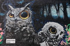 image (Kathi Huidobro) Tags: urban streetart london graffiti mural camden camdentown owls nw1 northlondon jamestownroad oliverswitch