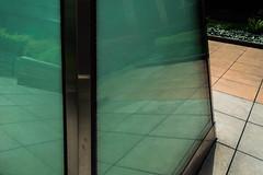 DSC_0117 (pillarsoflight) Tags: beauty oregon portland nikon adobe pdx 1855 pnw lightroom d3300