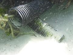Occy pots (Figgles1) Tags: beach snorkel south snorkeling pot pots octopus fremantle groyne southbeach fsc occy southfremantle fremantlesailingclub p1020071