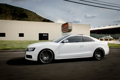 AUDI S5 x ACE Driven (ACEALLOYWHEEL/AMF FORGED) Tags: wheel nissan ace wheels convex exotic devotion modified flush custom lowered 350z concave slammed stance fitment acealloywheel acealloy zociety