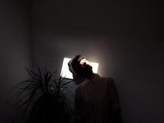 zz (LaSandra.) Tags: light shadow sun selfportrait plant girl indoor sandralazzarini