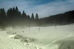 Mist (oliko2) Tags: trees winter sky mist mountain snow nature fog 35mm germany landscape outdoor blackforest schauinsland nikond7100
