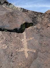 Petroglyph / Blackrock Well Site (Ron Wolf) Tags: california archaeology lizard nativeamerican petroglyph anthropology shoshone rockart zoomorph piute numic