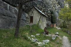 coin des ermites (bulbocode909) Tags: suisse statues vert arbres printemps valais falaises cabanes stmaurice stam maisondesermites chapelleduscex