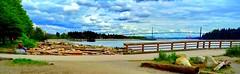 The Lions Gate Bridge (peggyhr) Tags: ocean canada beach vancouver clouds rocks bc logs cranes driftwood burrardinlet lionsgatebridge railings suspensionbridge peggyhr happyfencefriday dsc04349a amblesidebeachfence