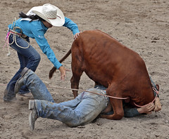 The World S Best Photos Of Hawaii And Rodeo Flickr Hive Mind