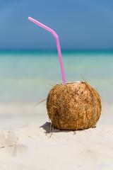tasty (pesch.florian) Tags: life travel sea still meer coconut cuba caribbean pina kokosnuss colada karibik