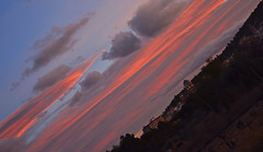 (Rubens92) Tags: sunset sky orange naturaleza sun flores flower nature clouds landscape atardecer countryside spain nikon paisaje cielo campo yecla