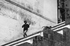 @ Varanasi, UP (Kals Pics) Tags: life street boy people blackandwhite india monochrome animals monkey kid play pov steps perspective streetphotography varanasi colorless kashi ghats roi benares kasi cwc sati uttarpradesh banares varanashi lordshiva manikarnika incredibleindia annapoorani rootsofindia kalspics chennaiweelendclickers