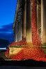 The Poppies (juliereynoldsphotography) Tags: sunset liverpool landscape poppies stgeorgeshall juliereynolds juliereynoldsphotography
