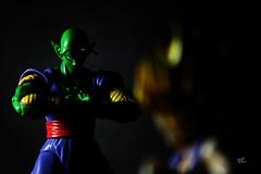 gohan vs piccolo (r.triananda) Tags: ball actionfigure dragon z piccolo dragonballz bandai gohan dbz shf tamashii shfiguarts