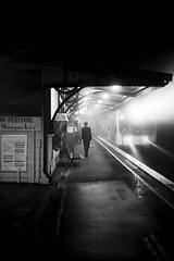A misty Blackheath night on the cutting room floor (Albion Harrison-Naish) Tags: blackheath streetphotography olympus em5 olympusem5 lumixg20f17ii albionharrisonnaish