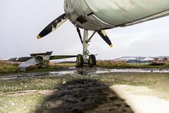 (B.B.Photography.) Tags: urban abandoned plane nikon aircraft navy royal d750 fairey t5 nikkor exploration f4 gannet errol 24120