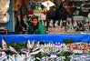Fisherman at the Grand Bazaar - Istanbul, Turkey (Felix Cesare) Tags: travel sunset seagulls silhouette skyline turkey blog asia europe ataturk lira muslim islam religion turkiye silhouettes istanbul blogger mosque wanderlust adventure nomad sultan bazaar muslims bluemosque kebab topkapi taksim flights turks turkish nomads bosphorus mosques turk travelblog sultanahmet turkishfood doner fatih galata kadikoy goldenhorn supertramp turkishdelight kurdish uskudar globetrotter grandbazaar ayasofya spicebazaar besiktas halic turkishlira eminonu balat ortakoy donerkebab tork turkie kabatas travelmagazine travelblogger istanbula istanbulskyline muslimreligion istanbuli globetrottering turkishmosques travelporn fly4free turkishattractions