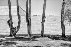 Casa das Historias - Museu Paula Rego / Eduardo Souto de Moura (kiss of architecture - andras kiss) Tags: blackandwhite portugal architecture lisboa cascais eduardosoutodemoura casadashistorias museupaularego photograpersontumblr