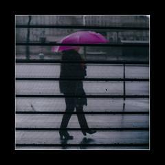 Polyptyque (Photo-LB) Tags: paris france silhouette rose store fuji pluie lumiere streetphoto capitale rideau parapluie larue polyptyque fujix100t
