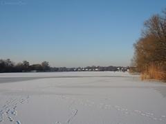 Frozen Wakenitz (ChristianeBue) Tags: schnee winter snow ice germany deutschland lbeck eis tyskland schleswigholstein wakenitz
