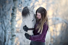 Forever Mine (Hestefotograf.com) Tags: winter horses horse snow love oslo norway caballo bokeh pony camouflage cavalos ponies forever pferde dappled cavalo pferd whitehorse equine equus paard horseandgirl equinephotography equinephotographer hestefotograf