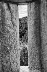 Pantano del Sitjar (J.Gargallo) Tags: bw espaa byn blancoynegro canon eos blackwhite agua paisaje pantano castelln comunidadvalenciana eos450d sitjar canon450d ribesalbes canonefs18200