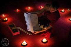 Companion - Wat Pha Lat