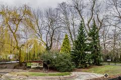 IMGL5534 (TAHSEEN AL AWAD) Tags: canon photographer photographers poland krakow photographic picturesque myshot zakopane photshop 2016   warsow      tahseenalawad