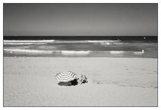 last days of summer  #350