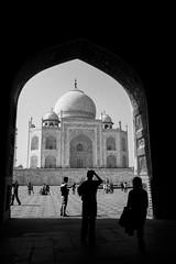 (Terrini) Tags: travel india tomb tajmahal agra unescoworldheritagesite mausoleum southasia shahjahan mughalarchitecture mumtazmahal muslimart mughalemperor