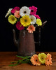 Colorful Spring Bouquet (njk1951) Tags: wood stilllife blackbackground daisies spring gerbera copper daisy ribbon bouquet gerberadaisies woodtable springbouquet antiquecopper coppercoffeepot