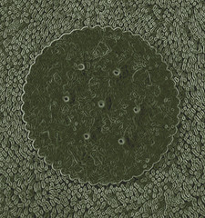 A Sea Of Scalloped Impressions (Design Photo by Nolan H. Rhodes) (nrhodesphotos(the_eye_of_the_moment)) Tags: white abstract green texture monochrome yellow design artistic creative fantasy outofthisworld circular impressionistic edges scalloped dimensional otw nrhodesphotosyahoocom wwwflickrcomphotostheeyeofthemoment dsc08057160