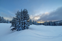 Snowy sunset from Crater Lake (acase1968) Tags: park trees winter sunset ski oregon nikon cloudy dusk tracks southern national d750 f28 xcountry partly 14mm rokinon
