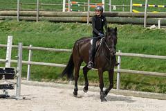 DSC00479_s (AndiP66) Tags: sports sport training schweiz sony luzern alpha equestrian ch horsejumping springen a7ii lensadapter f456 7ii pferdesport sonyalpha springreiten menznau wolhusen 7m2 andreaspeters buholz pferdespringen grueb sony70400mm martinameyer laea3 sal70400g2 sony70400mmf456gssmii ilce7m2 7markii