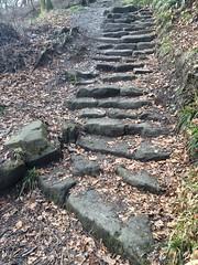 Tolkienesque steps (markshephard800) Tags: uk stairs scotland countryside steps gb lochlomond balmaha
