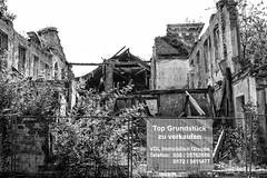 Wer bietet mehr? (Panasonikon) Tags: ruine verkaufen immobilie lumixfz200 warmerabriss